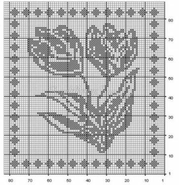 tulipCHTa